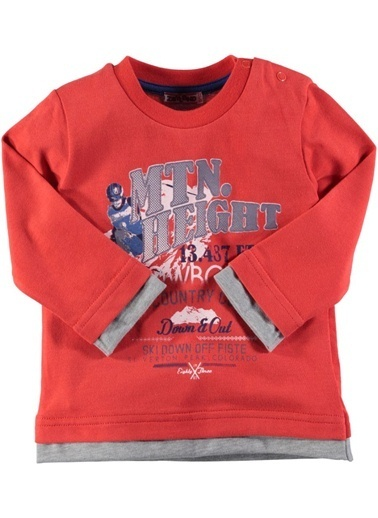 Sweatshirt-Zeyland